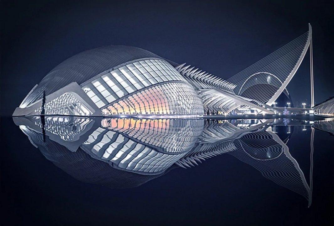 """Foto elegida por el gran jurado. Nombre: Pez. Autor: Pedro Luis Ajuriaguerra Saiz. Descripción: """"Dado el reflejo del agua en la noche, la arquitectura del edificio muestra la figura de un pez, quizá prehistórico pero con el corazón aún latiendo""""."""